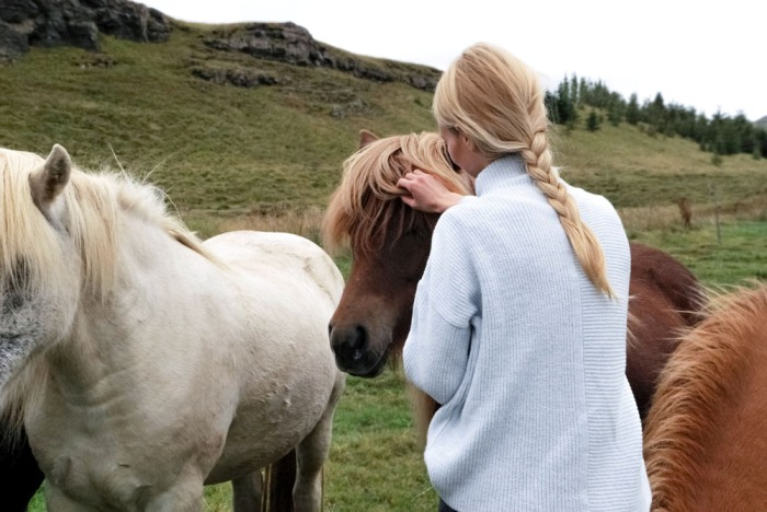 equine-assisted-therapy